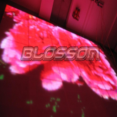 P25 LED Acrylic Video Dance Fl...
